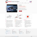 Arrow Consulting Group LCC-rus